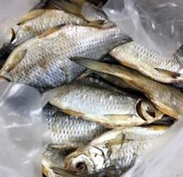 Cá khô át vobla Astrakhan