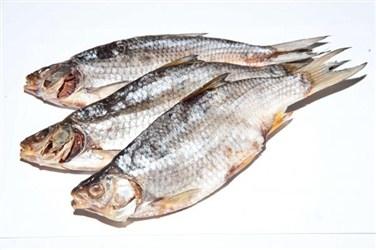 Cá át vobla Astrakhan