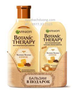 Bộ cặp dầu gội xả sáp ong chúa Garnier Botanic Therapy